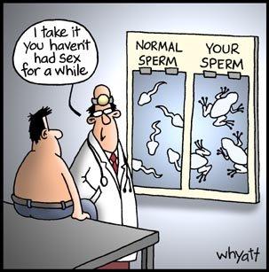 cartoon celibacy