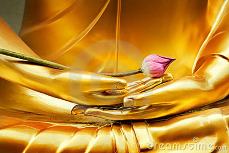 lotus-hand-buddha-21330823